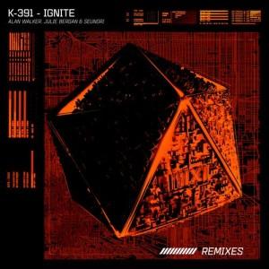 勝利的專輯Ignite (Remixes)