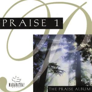 Listen to Seek Ye First (Praise And Worship Top 40 Album Version) song with lyrics from Maranatha