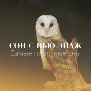 Album Сон с Нью Эйдж from Peaceful Sleep Music Collection