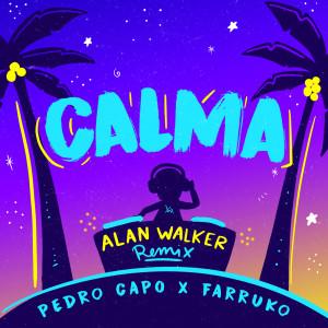 ดาวน์โหลดและฟังเพลง Calma (Alan Walker Remix) พร้อมเนื้อเพลงจาก Pedro Capo
