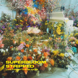 Album SUPERBLOOM (stripped) (live from the bloom) from MisterWives