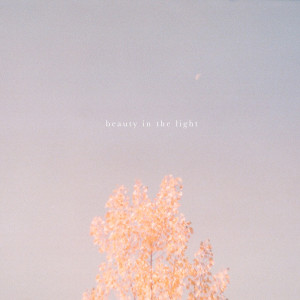 Album Beauty in the Light (Acoustic) from Hollow Coves