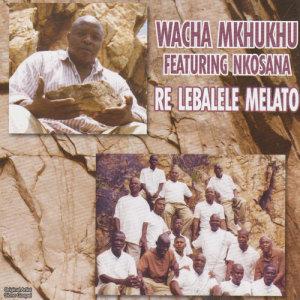 Listen to Ke Matlhomola Pelo song with lyrics from Wacha Mkhukhu