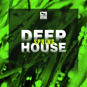 Album Deep House: Spring from Various Artists