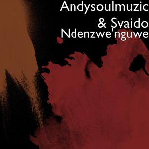 Album Ndenzwe'nguwe from Andysoulmuzic