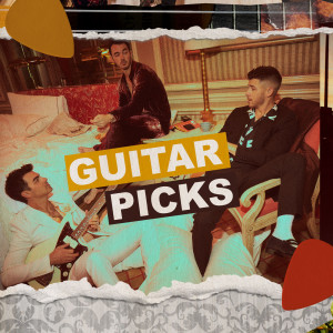 GUITAR PICKS dari Jonas Brothers