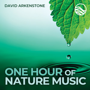 David Arkenstone的專輯One Hour Of Nature Music: For Massage, Yoga And Relaxation
