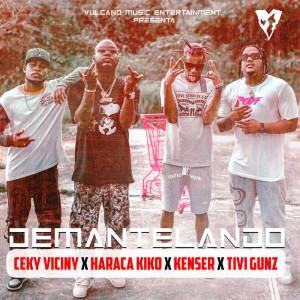 Album Demantelando from Ceky Viciny