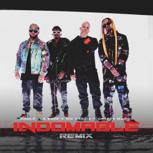 Gigolo Y La Exce的專輯Indomable (Remix) (Explicit)