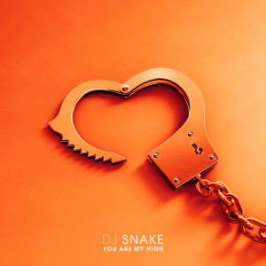 DJ Snake的專輯You Are My High