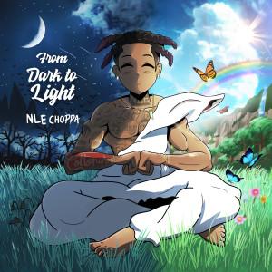 Album From Dark to Light from NLE Choppa