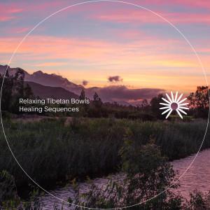 Relaxing Tibetan Singing Bowls的專輯Healing Sequences