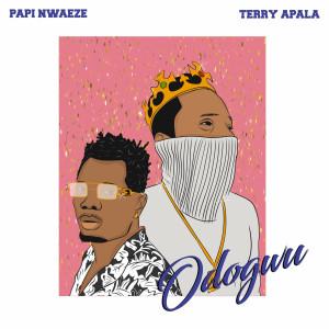 Album Odogwu from Terry Apala