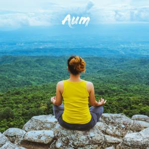 Album Asana from Aum Meditación