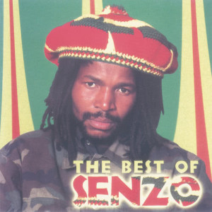 Listen to Who's Gonna Care? song with lyrics from Senzo