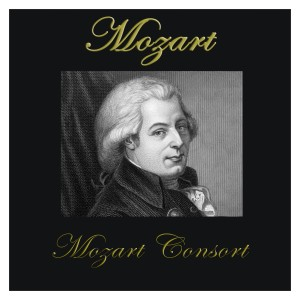 Listen to Sonata No. 12 F Major, Kv 332 II. Adagio song with lyrics from Mozart Consort
