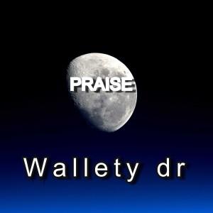 Album Praise from Wallety dr