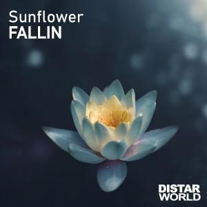 Album Fallin from Sunflower