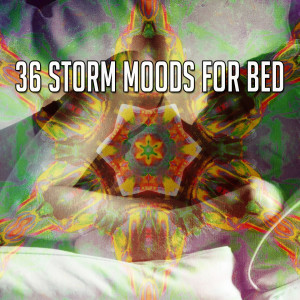 Album 36 Storm Moods for Bed from Rain Sounds & White Noise