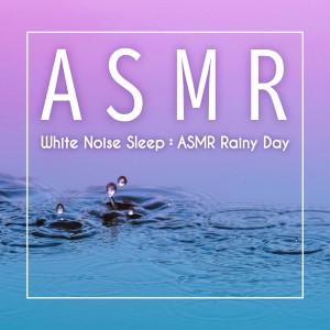 貴族音樂心靈的專輯白噪音睡眠: ASMR舒眠雨天