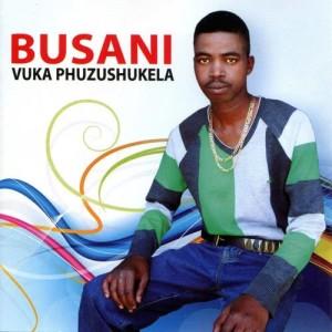 Album Vuka Phuzushukela from Busani
