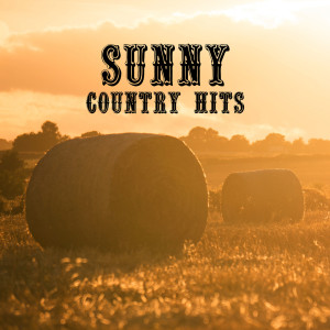 Album Sunny Country Hits (The Good Time with Western Music) from Wild Country Instrumentals