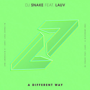 Listen to A Different Way song with lyrics from DJ Snake