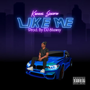 Album Like Me (Explicit) from dj Shawny