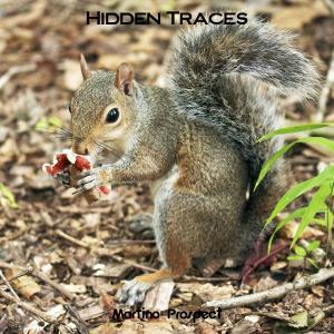 Album Hidden Traces from Martino Prospect