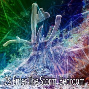 Album 25 Enter the Storm Bedroom from Rain Sounds Sleep