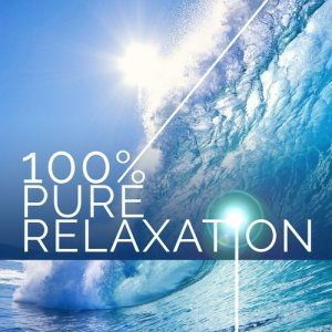 Album 100% Pure Relaxation from Pure Relaxation