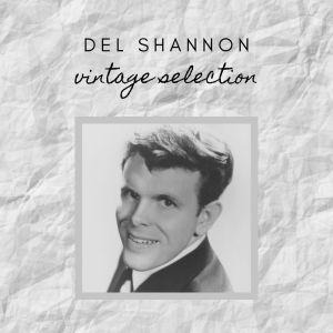Album Del Shannon - Vintage Selection from Del Shannon