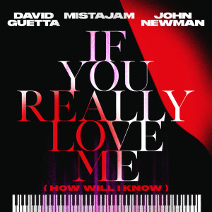 David Guetta的專輯If You Really Love Me (How Will I Know)