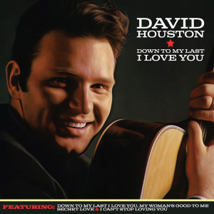Album Down to My Last I Love You from David Houston