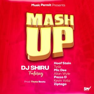 Album Mash Up from DJ Shiru