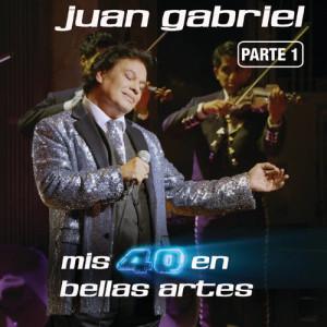 收聽Juan Gabriel的Tu A Mi No Me Hundes (En Vivo Desde Bellas Artes, México/ 2013)歌詞歌曲