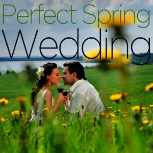 Album Perfect Spring Wedding - Beautiful Instrumental Piano Music Like Falling in Love, Canon in D, Here Comes the Bride, From This Moment on, The Way You Look Tonight, And More! from Pianissimo Brothers