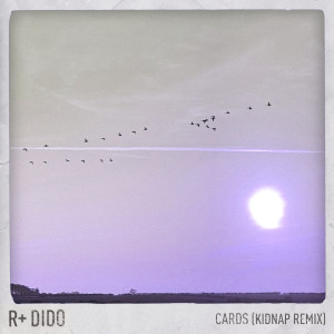 Album Cards (Kidnap Remix) from Dido