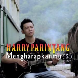Harry Parintang - Mengharapkanmu