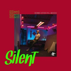 Listen to Silent (Ft: Mood) song with lyrics from Shwe Htoo
