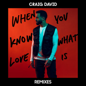 Craig David的專輯When You Know What Love Is (Remixes)