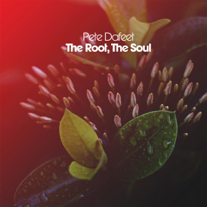 Album The Root, the Soul from Pete Dafeet