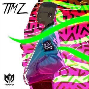 Album Timz from Bad Boy Timz