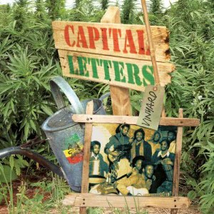 Album Vinyard from Capital Letters