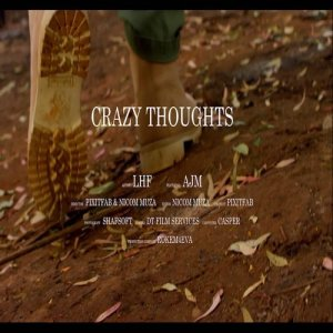 Album Crazy Thought Single from LHF