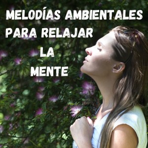 Album Melodías Ambientales para Relajar la Mente from Musica Para Meditar