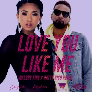Che'Nelle的專輯Love You Like Me (Walshy Fire & Natty Rico Remix) [feat. Konshens]