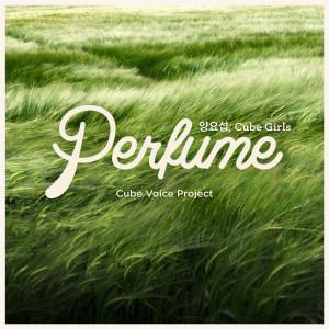 Cube Voice Project `Perfume` 2013 Yang Yoseob (Highlight); Cube Girls