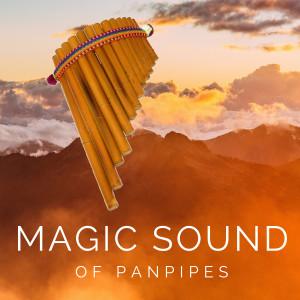 Album Magic Sound Of Panpipes from Pastor Solitario