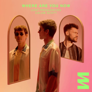 Album Where Are You Now from Lost Frequencies